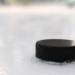 hockey puck small